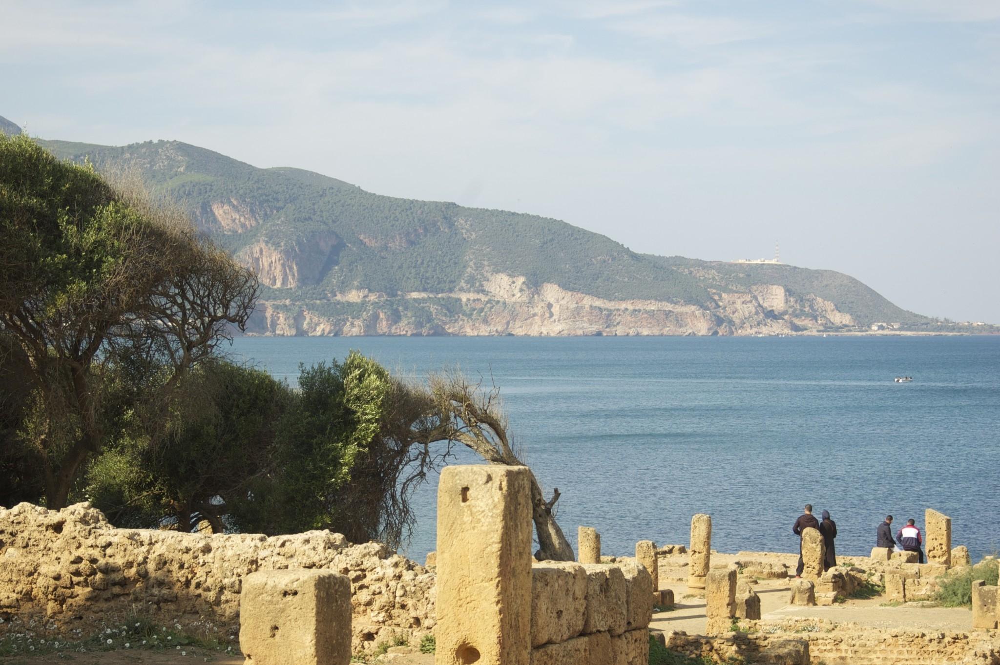 Algiera wizy informacje praktyczne