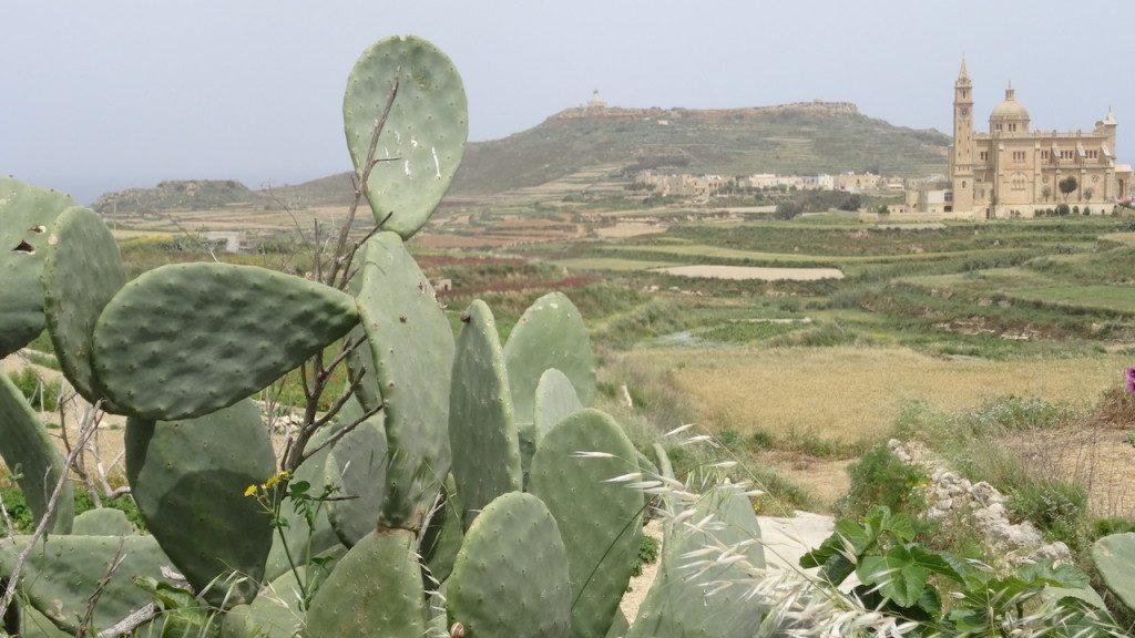 Malta co zobaczyć atrakcje zwiedzanie Valletta Gharb