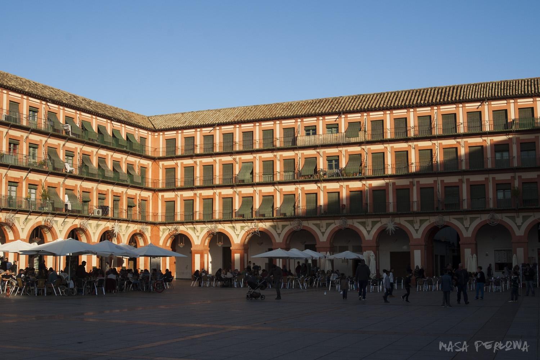 Kordoba Andaluzja Hiszpania zwiedzanie co zobaczyć