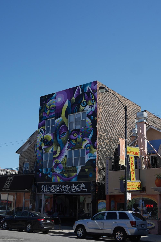 West Town Chicago Przewodnik po Chicago atrakcje zwiedzanie co zobaczyć