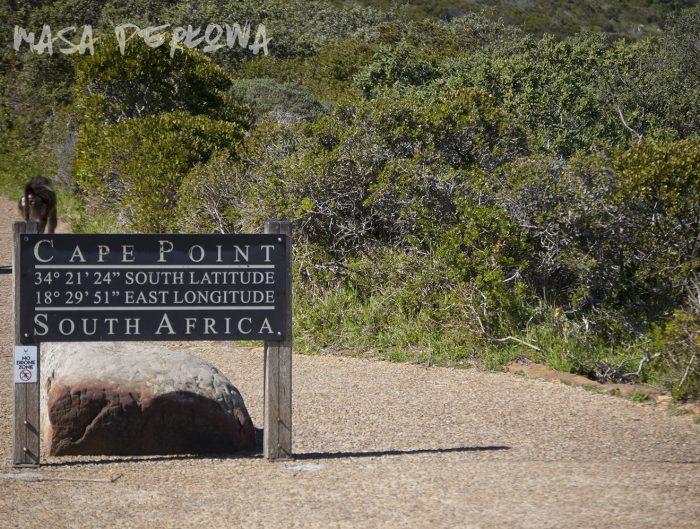 Przylądek Dobrej Nadziei Kapsztad RPA Afryka
