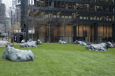 Toronto przewodnik atrakcje zwiedzanie Financial District